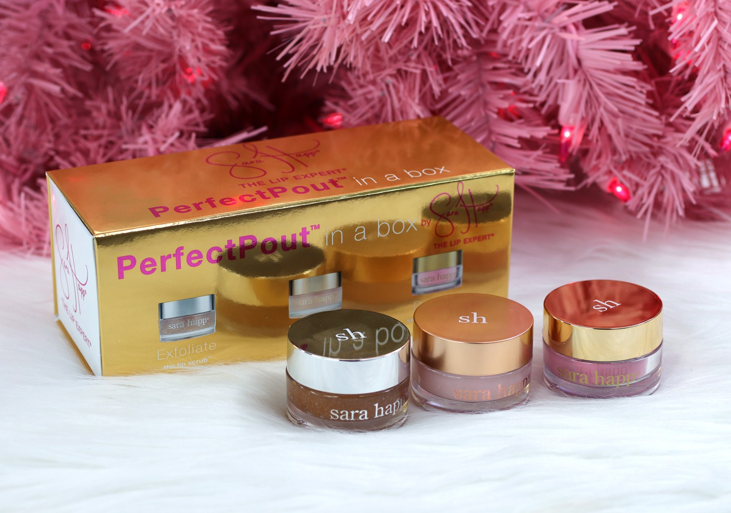 Sara Happ Perfect Pout Gift Set